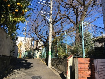 笹塚北児童遊園地001.jpg
