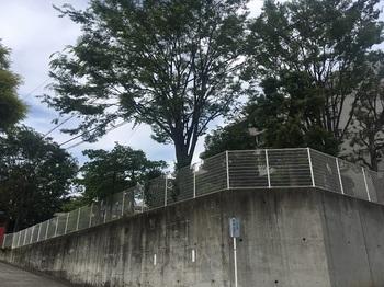 菅生二丁目公園001.jpg