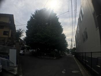 菅生第三公園001.jpg