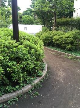 西荻窪中央公園007.jpg