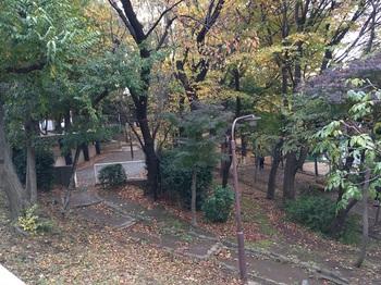 西馬込公園002.jpg