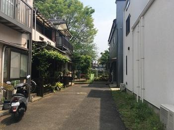 谷中公園001.jpg