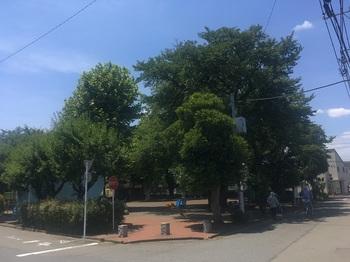 谷保第二公園001.jpg