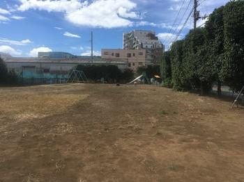 谷原ひばり遊園地004.jpg
