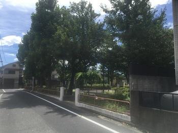 谷原児童公園001.jpg
