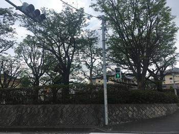 赤徳公園001.jpg