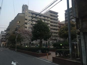 道仁公園001.jpg