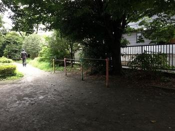 野川緑地公園011.jpg