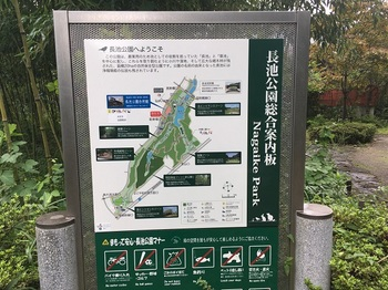 長池公園002.jpg