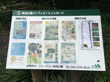 長池公園010.jpg
