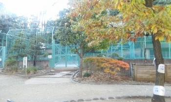 高輪公園09.jpg